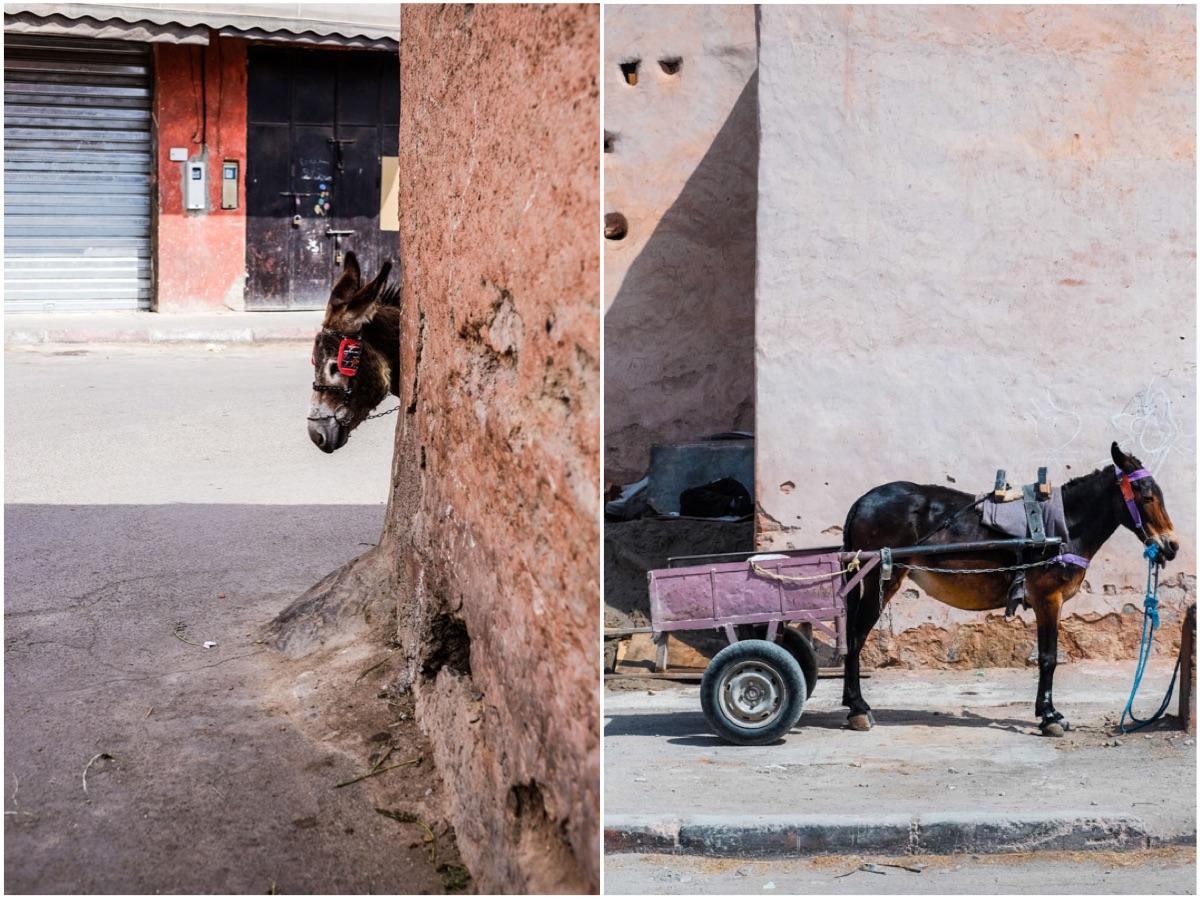 photographier le souk de marrakech