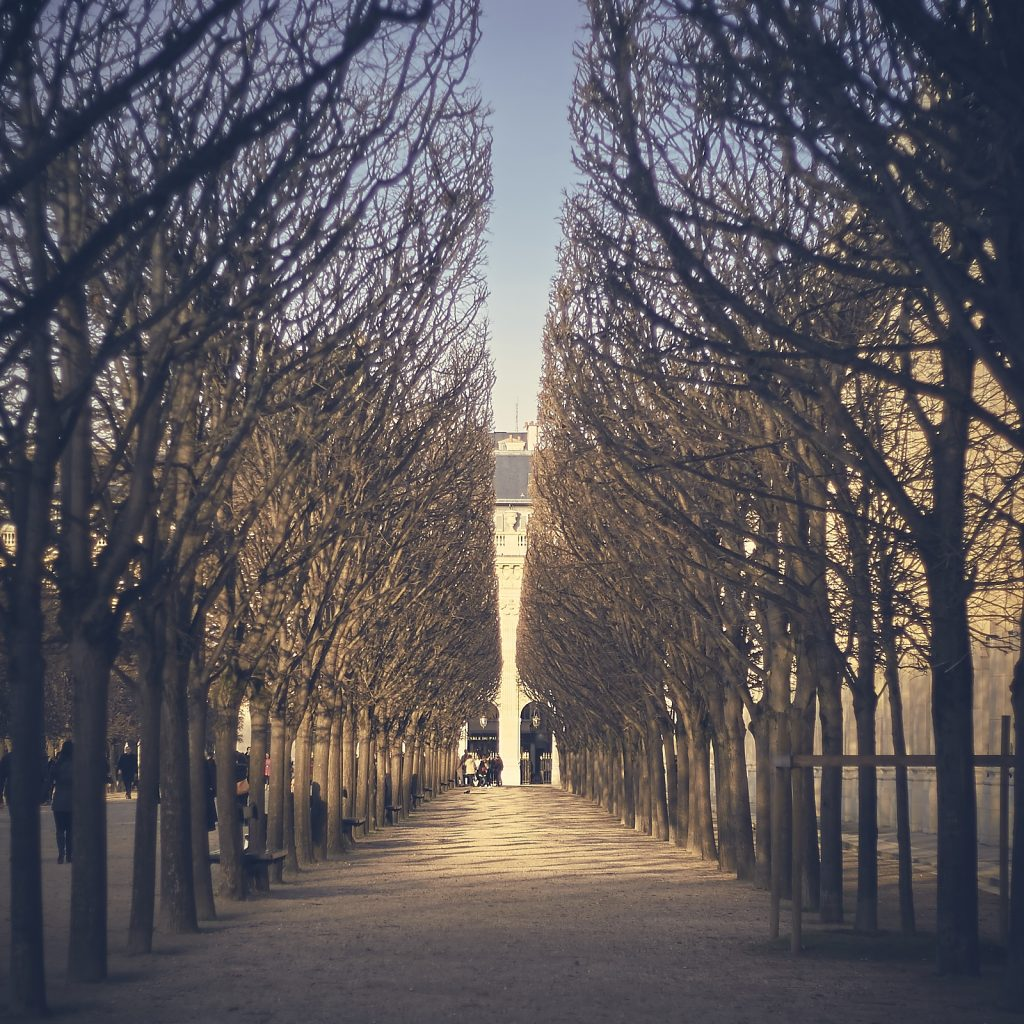 Photographier autour du Louvre