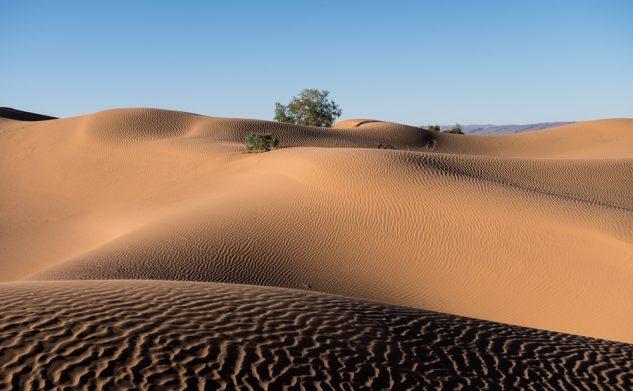 Randonnée chamelière dans le désert d'Erg Lihoudi