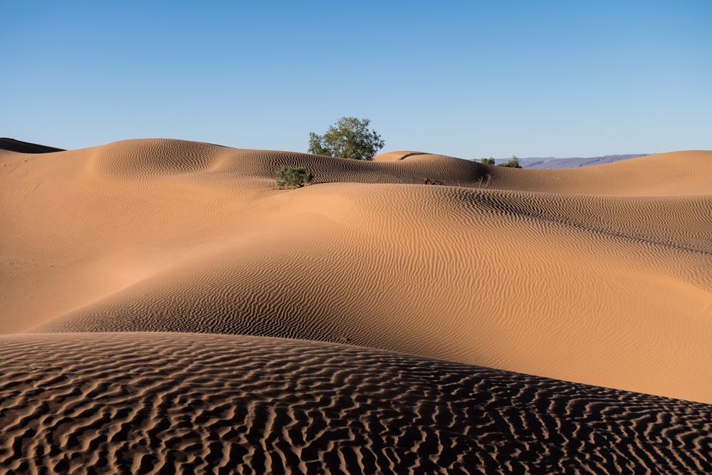 dune erg lihoudi