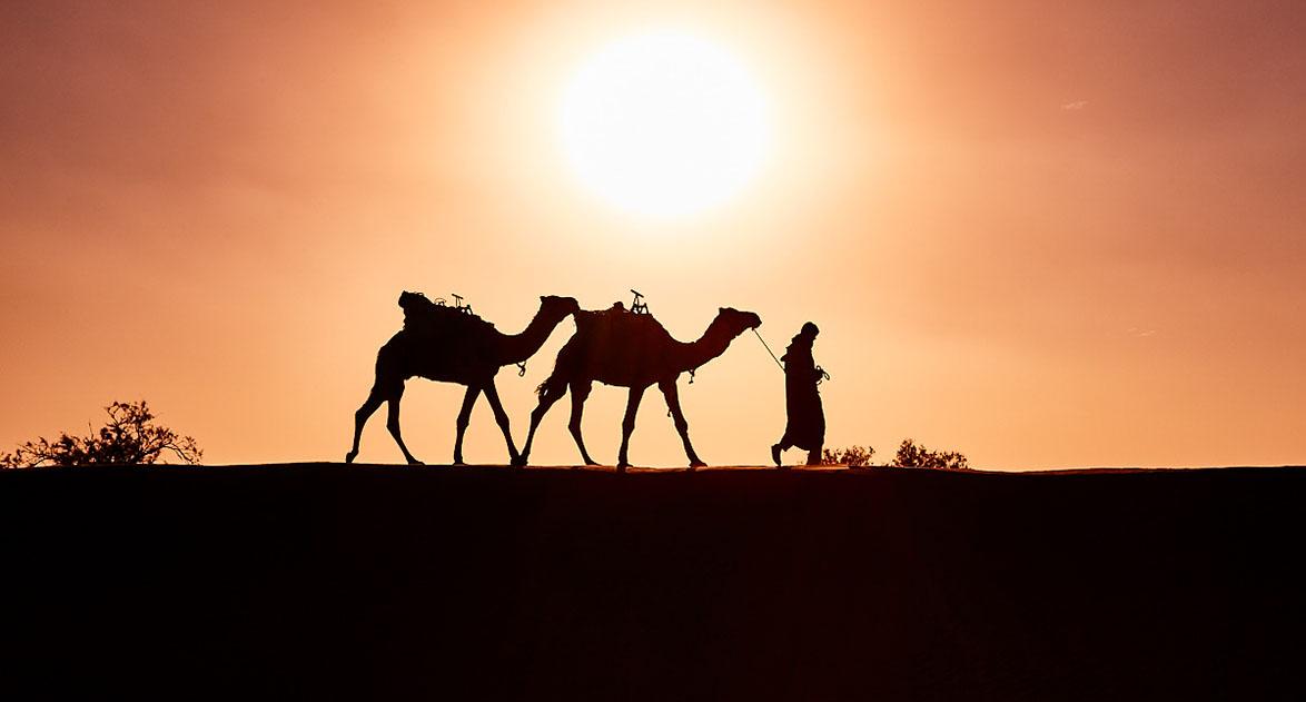 randonnée chamelière maroc