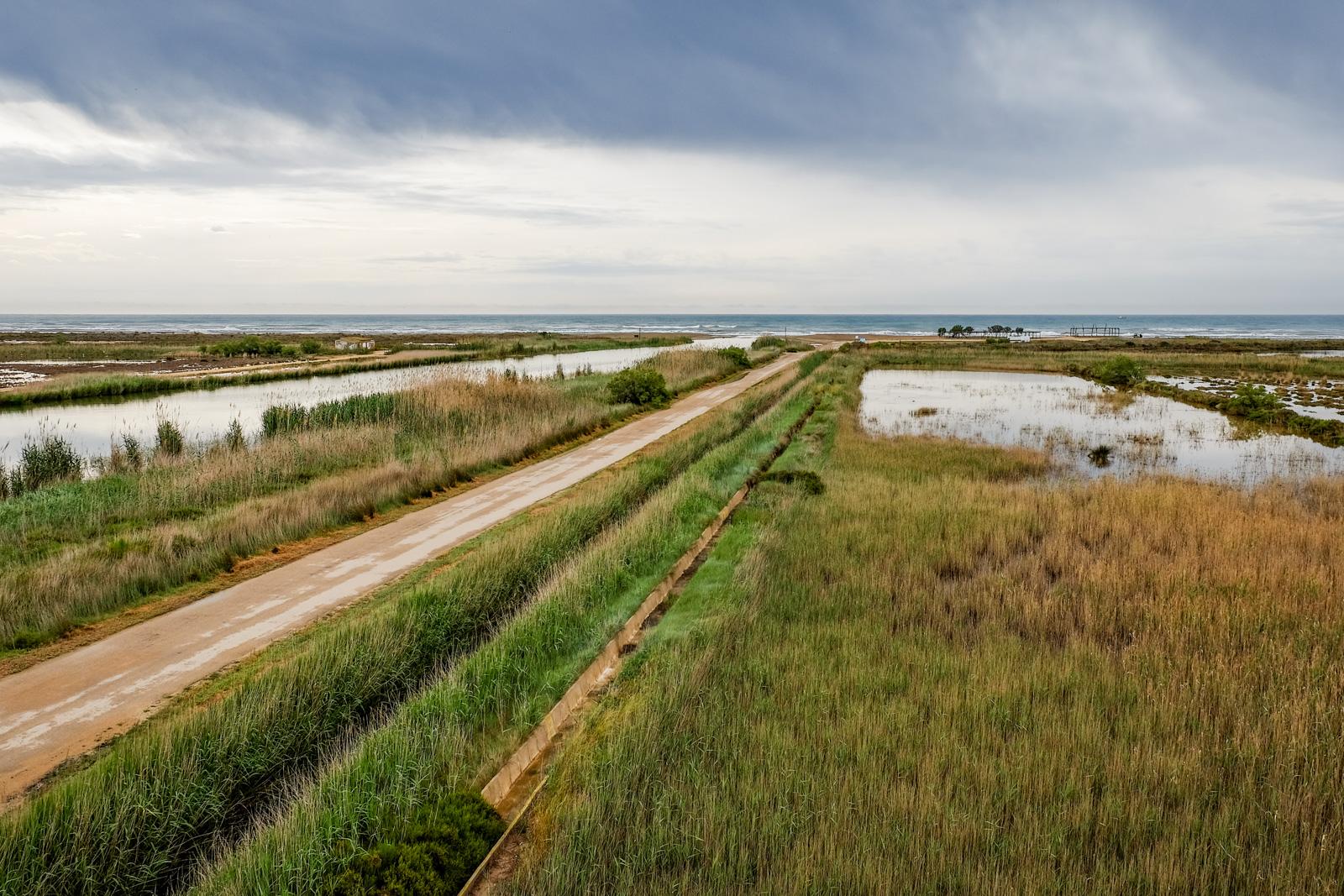 Road trip catalogne : delta de l'ebre