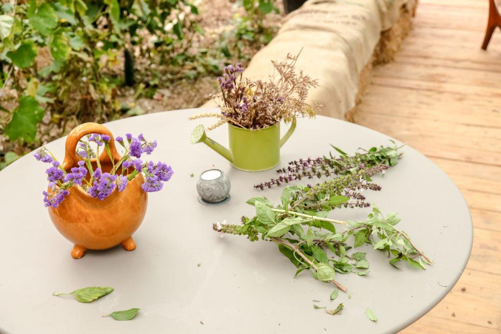 plantes aromatiques nice