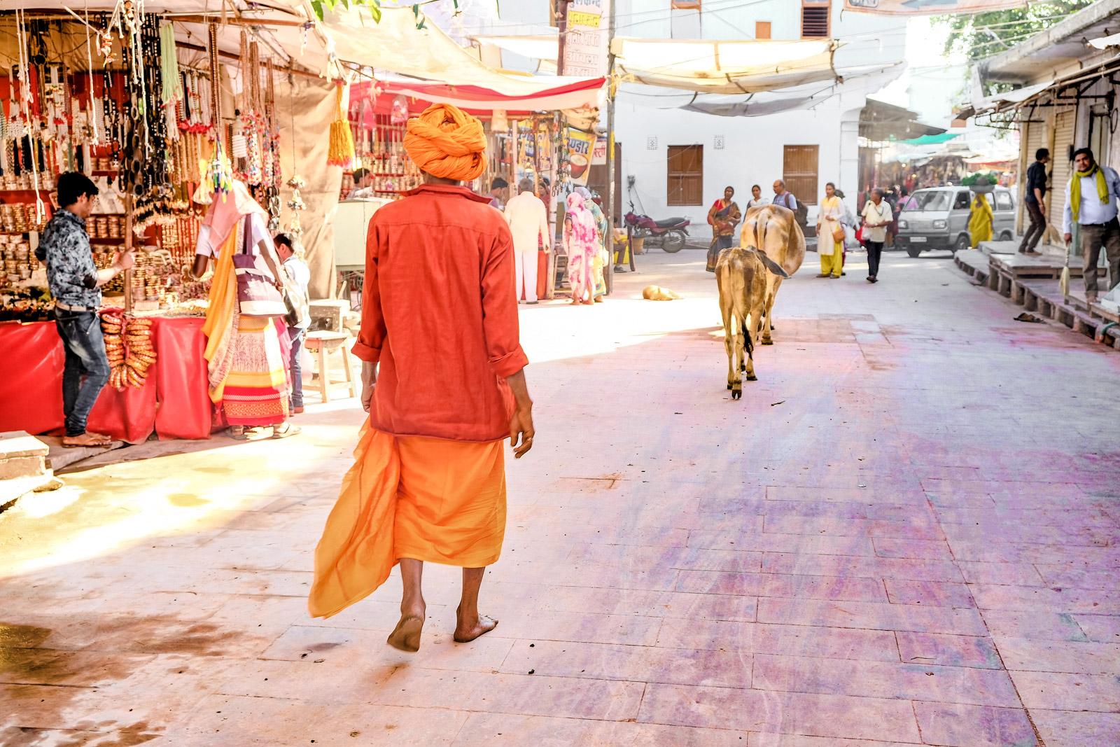 Premier voyage en Inde : comment se préparer ?