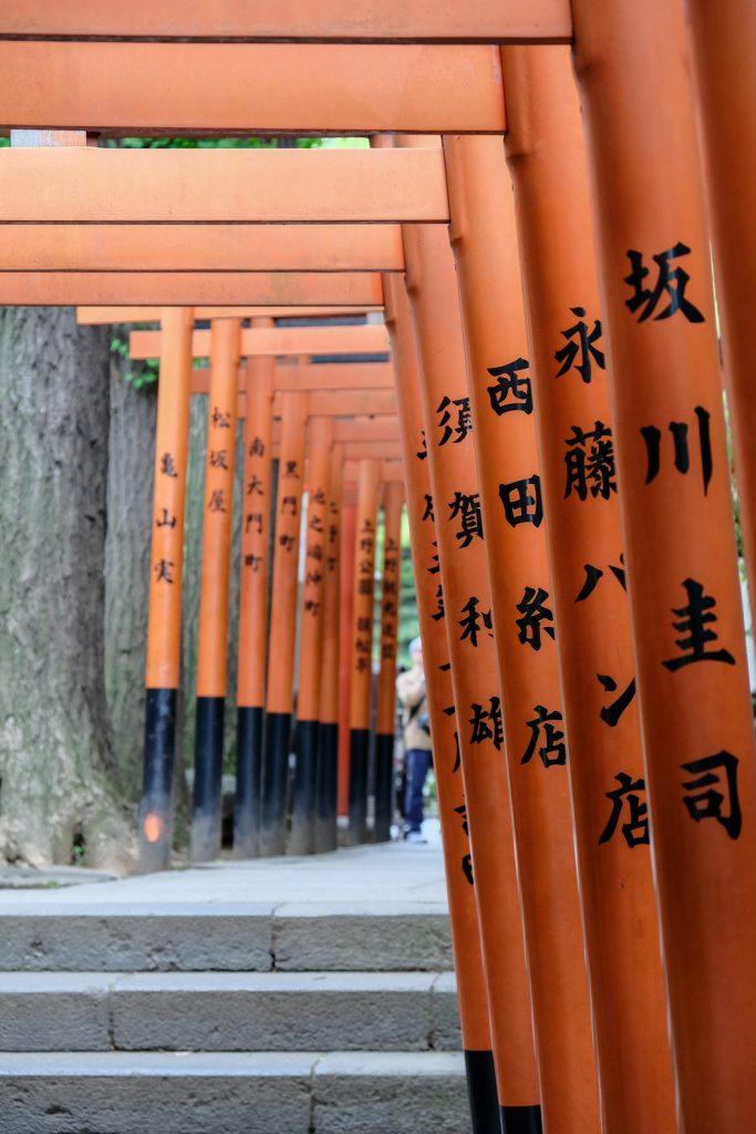 torii rouges japon