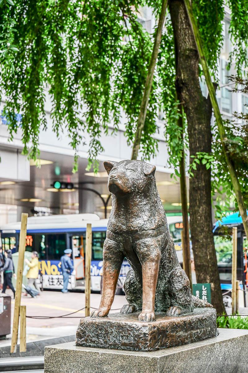 statue commémorative de Hachiko à Tokyo