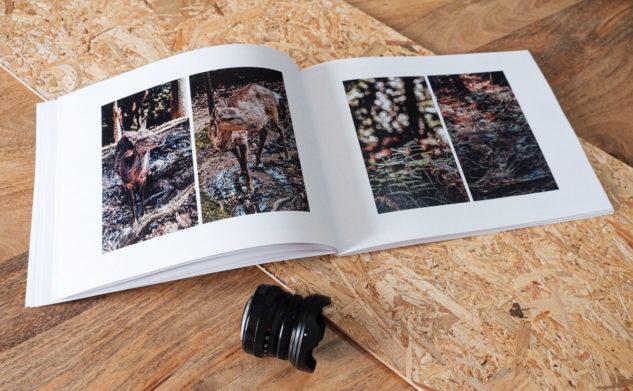 Créer un album photo de voyage avec Rosemood : avis et conseils