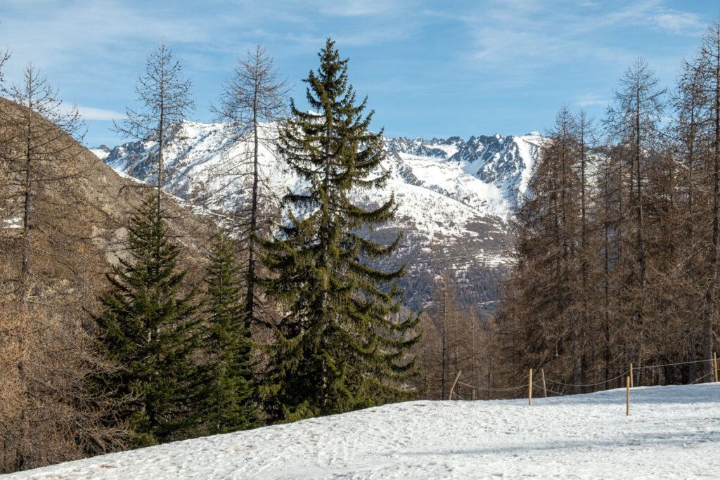 paysage montagne mercantour
