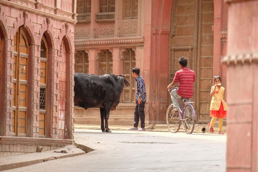 visiter Bikaner rajasthan