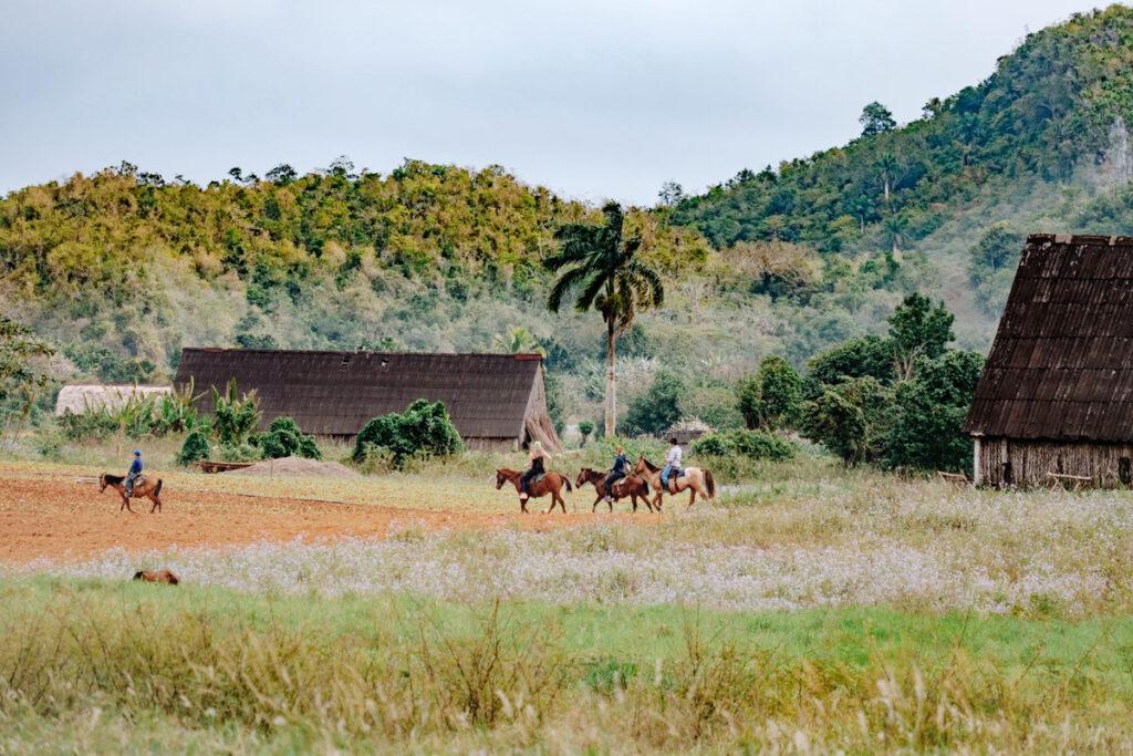randonnée cheval viñales