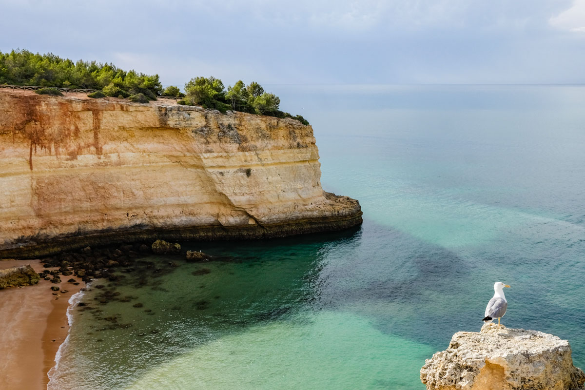 plage algarve portugal