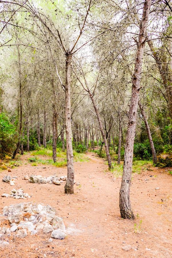 chemin randonnée algarve